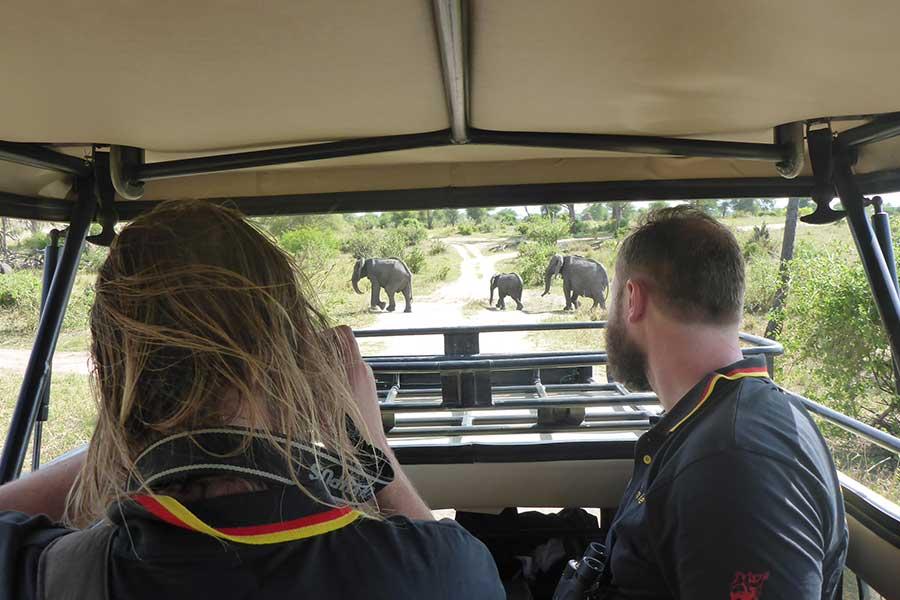 Day tour Tarangire National Park