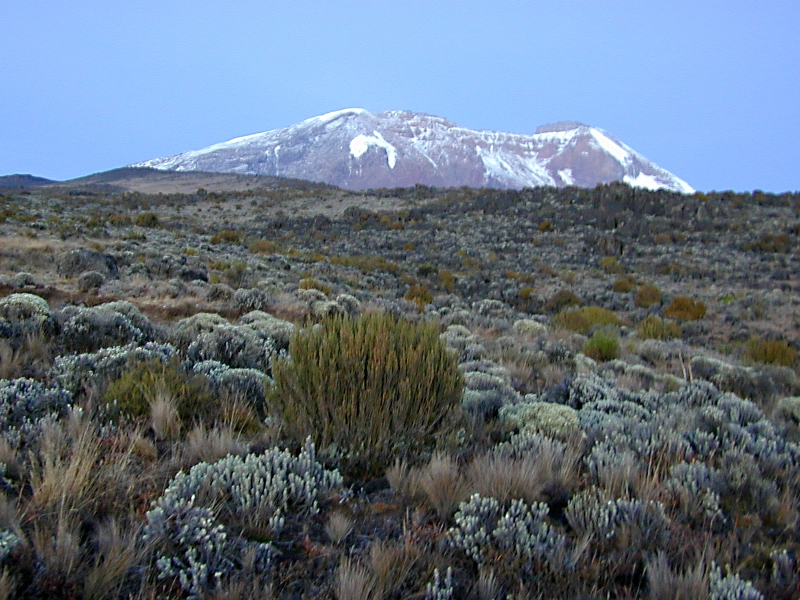 Kibo Peak view on 4th day of the 6 Days Machame Route Hiking