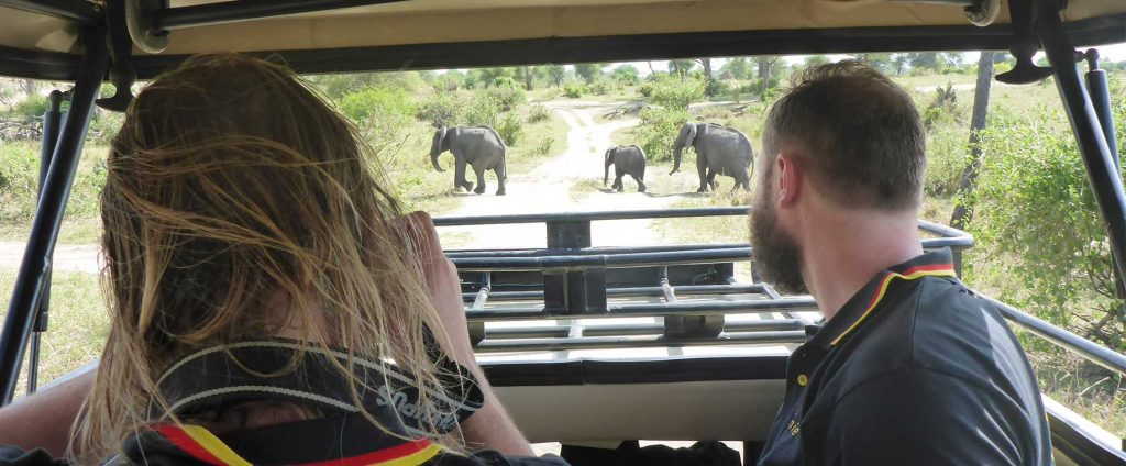 Game viewing - Zorilla Safaris & Treks