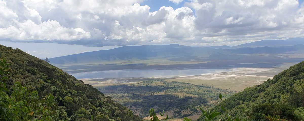 Ngorongoro Crater Day tour